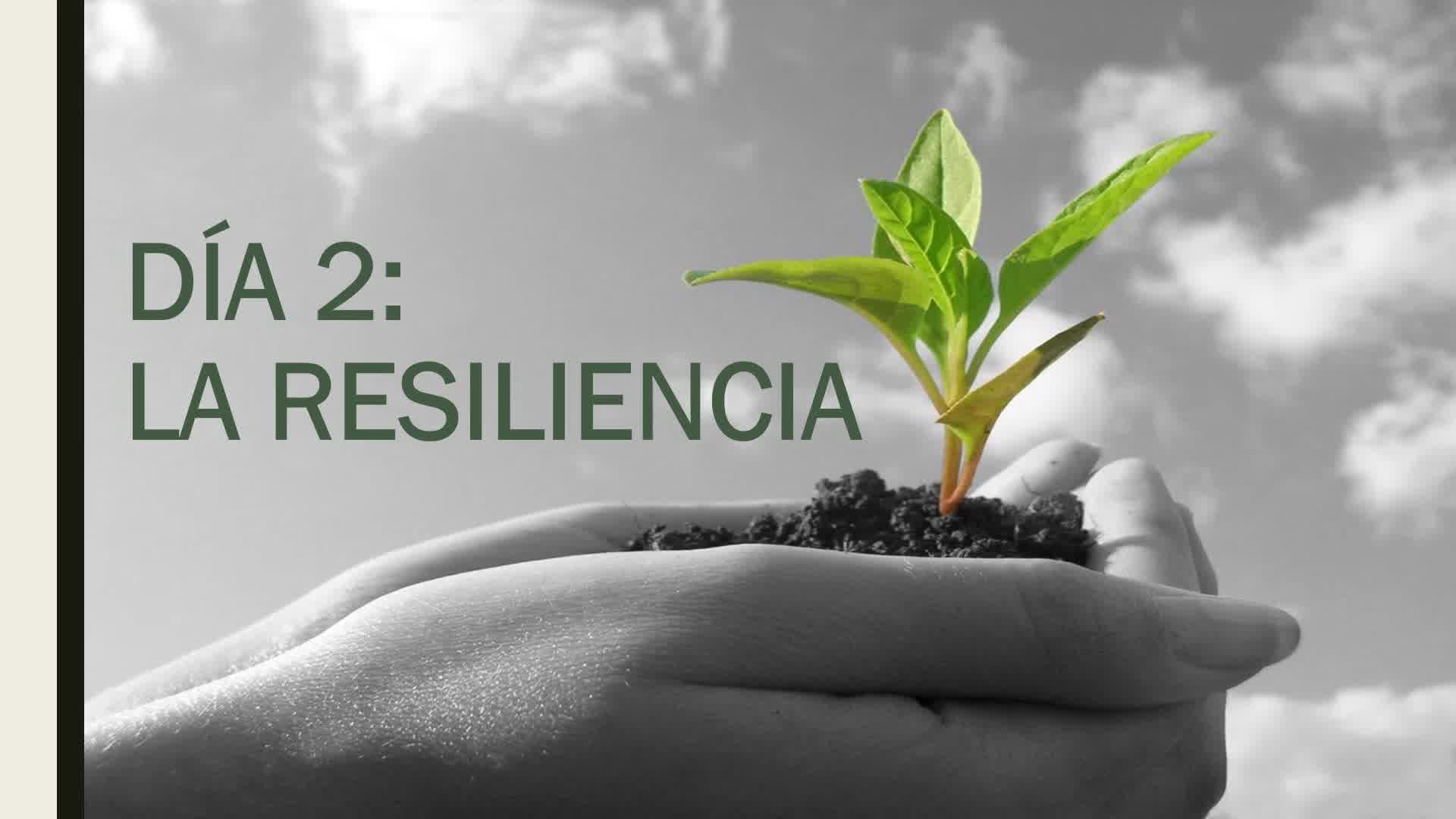 DIA 2 - RESILIENCIA